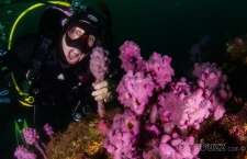 Nitrogen narcosis …it's a state of mind!