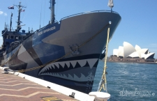 Sea Shepherd – Love them or loathe them?