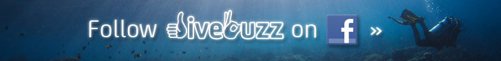 Follow DiveBuzz on Facebook