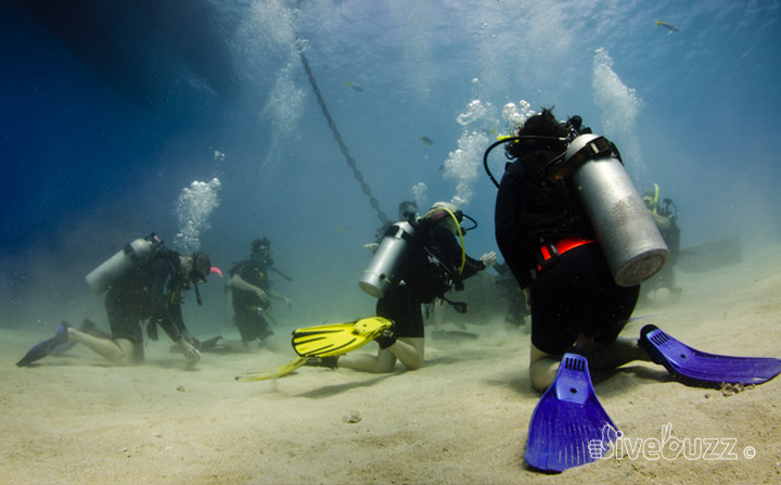 Choosing where to do your Open Water dive course