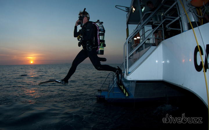 Going solo – the SDI Solo Diving course