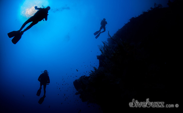 Qualified vs Experienced? Becoming a better SCUBA diver