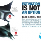 Extinction is not an option