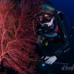 Calling all SCUBA Diver Girls